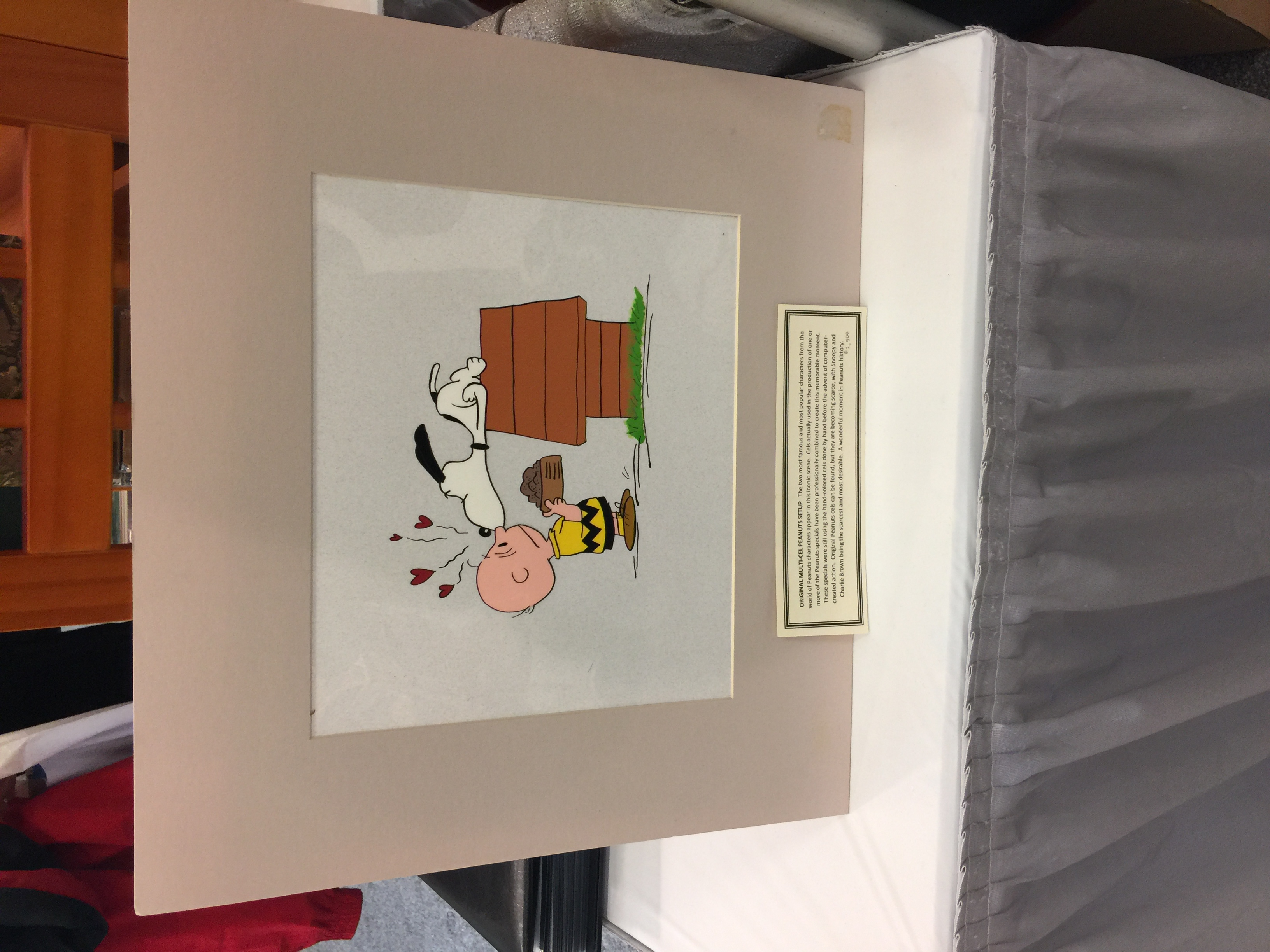 A Peanuts cel from one of the cartoons